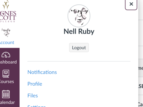 profile picture from CANVAS Learning management system for Nell Ruby